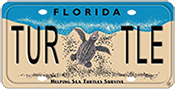 Seaturtle License Plate